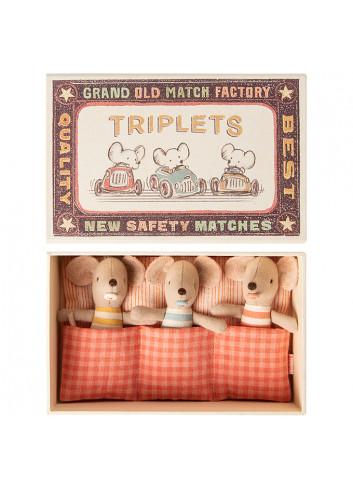Baby Muisjes | triplets in luciferdoosje