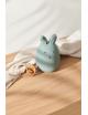 Nachtlampje Winston (oplaadbaar USB) | konijn peppermint