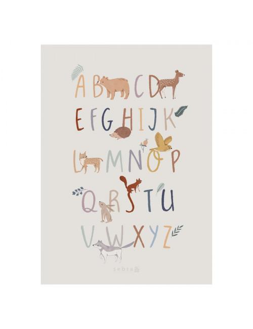 Poster Alphabet (A-Z) 50x70cm | nightfall